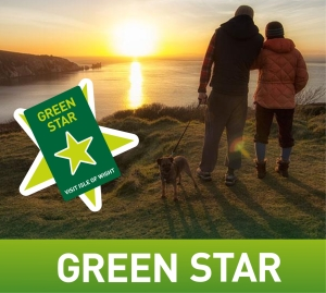 greenstar-advert